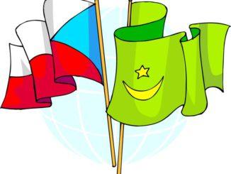 flaggor färglägga